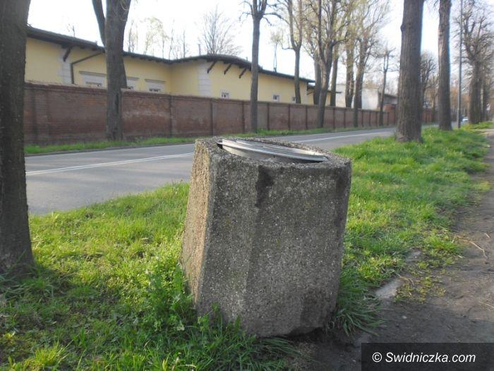 Świdnica: Kosztowne wygłupy