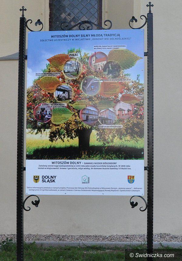 Gmina Świdnica: Promocja idei odnowy wsi dolnośląskiej w gminie Świdnica