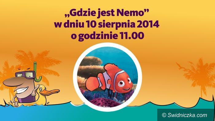 Świdnica: Gdzie jest Nemo w 3D [KONKURS]