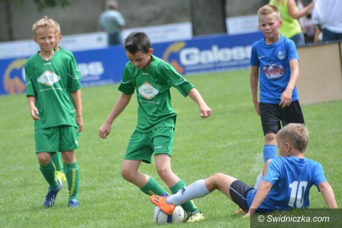 Świdnica: Silesian Cup wystartował