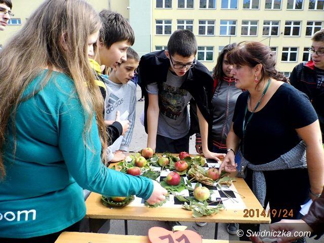 Świdnica: Festyn Pieczonego Jabłka