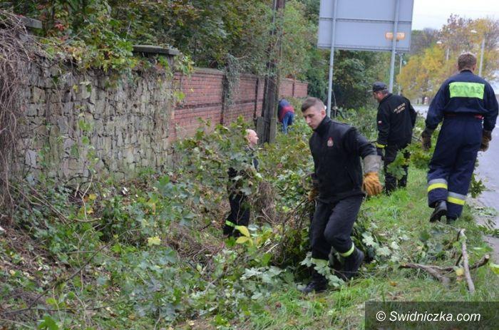 Rogoźnica: Strażacy porządkują poniemieckie cmentarze