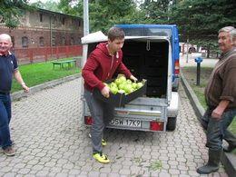 Gmina Marcinowice: Jabłka dla szkół