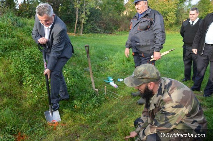 Stanowice: Wielka akcja sadzenia drzewek w Stanowicach