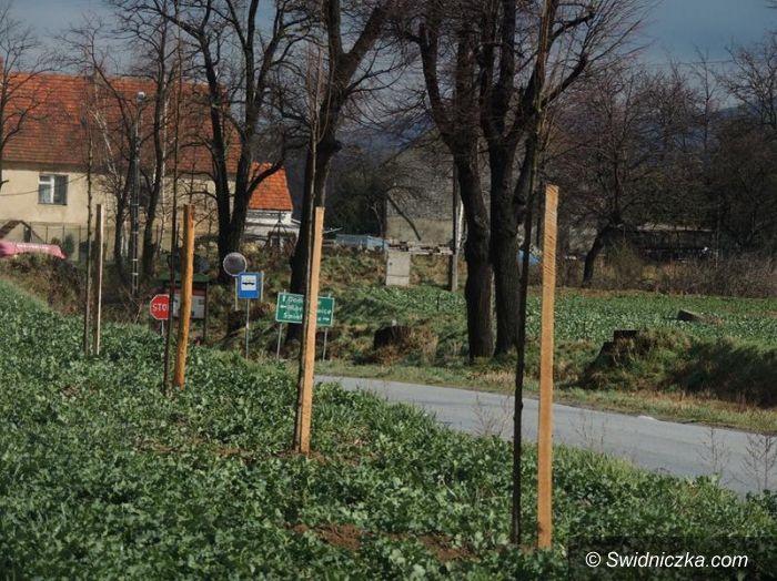 Siedlimowice: Dbają o swoją wieś