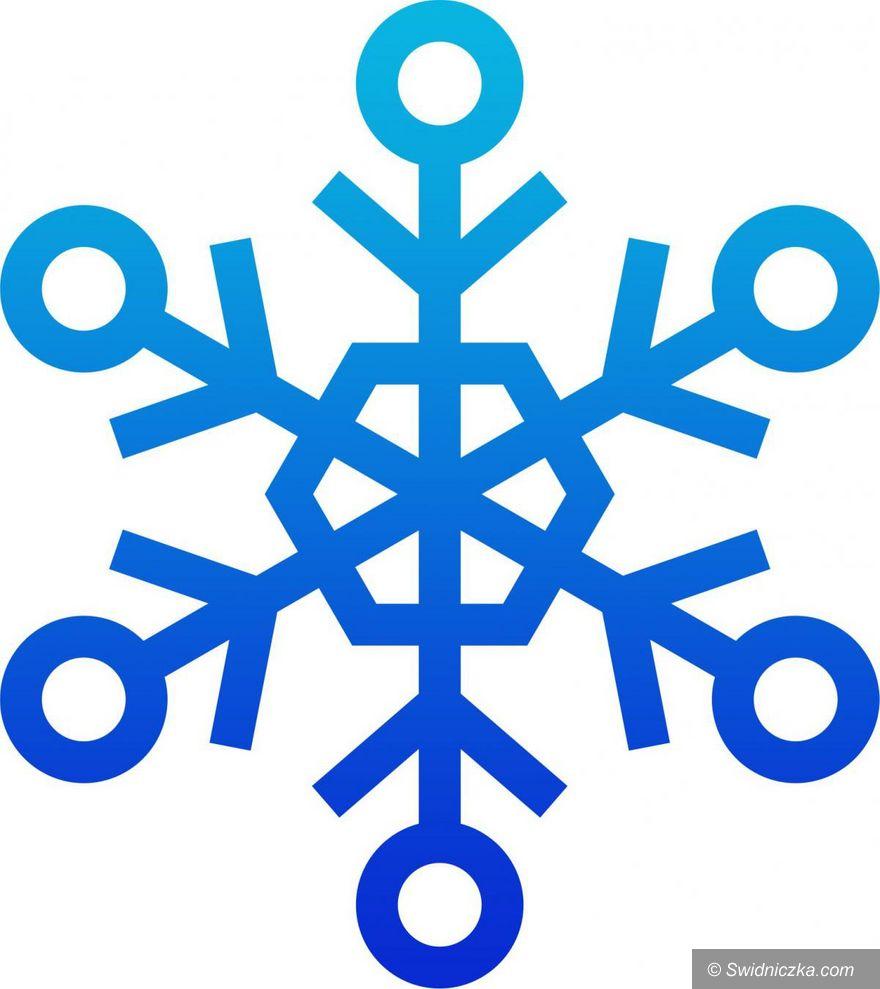 Świdnica: Ogólnopolska Olimpiada Młodzieży w Sportach Zimowych w internecie