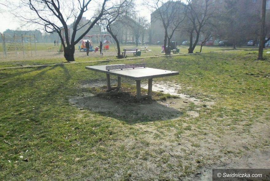 Świdnica: Zasiedli do stołu, choć to stół do tenisa