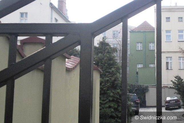 Świdnica: Porzucili psy, zamykając je w jednym z mieszkań w Rynku