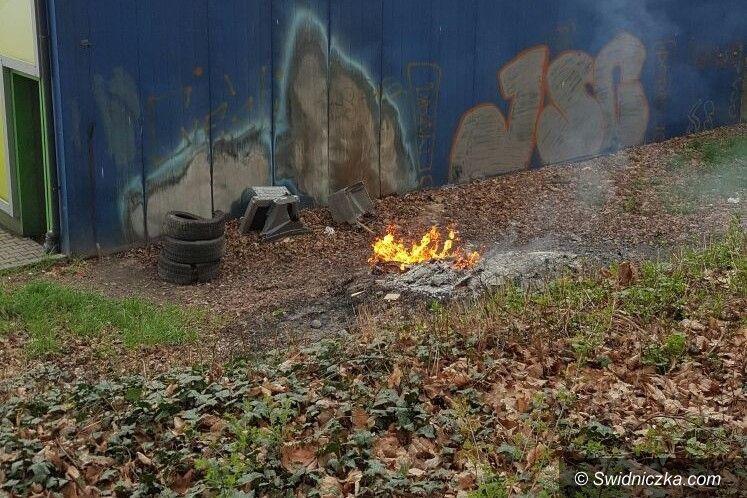 Świdnica: Palił obudowy po telewizorach