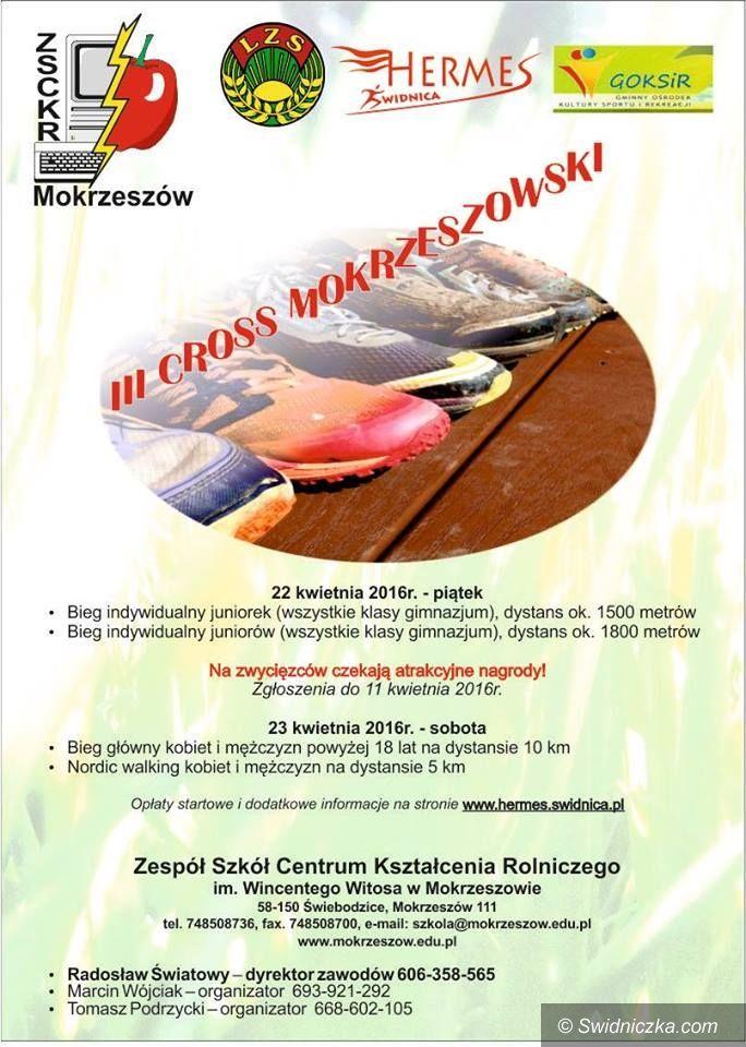 Świdnica: III Cross Mokrzeszowski