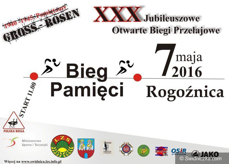 Świdnica: XV Złaz Piechurów Dolnego Ślaska – Krzyżowa 2016