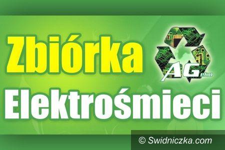 Świdnica: Kolejna zbiórka elektrośmieci