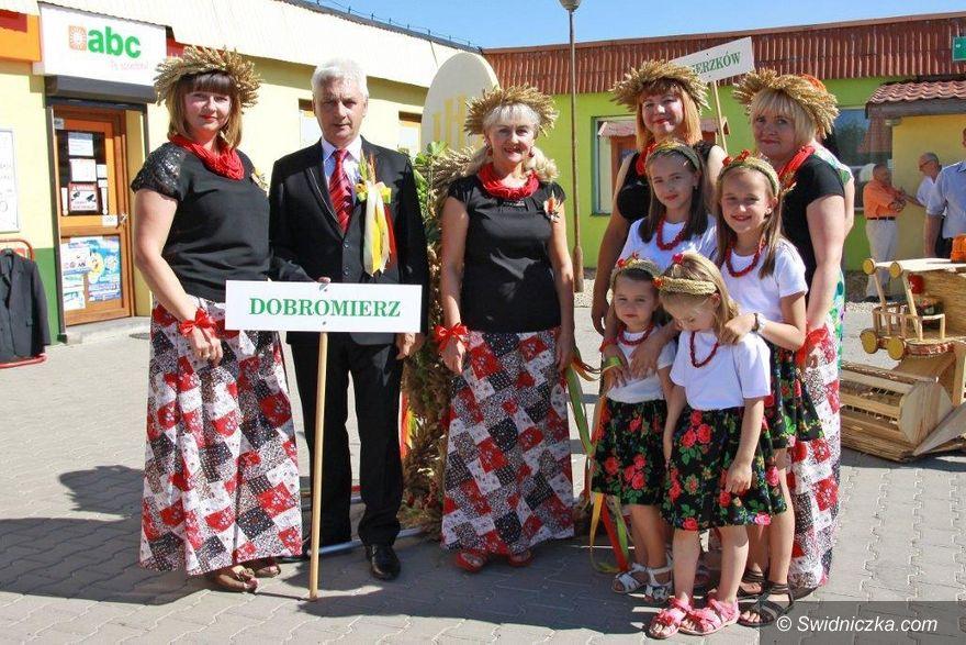 Szymanów: Dożynki w gminie Dobromierz