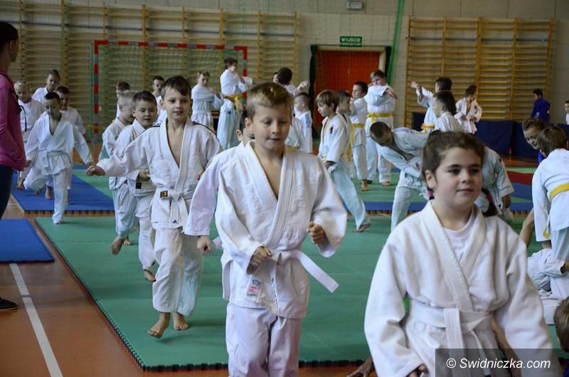 Żarów: Judocy w Żarowie