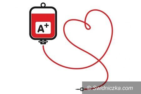 Świdnica: Krew można oddać w Urzędzie Miejskim w Świdnicy