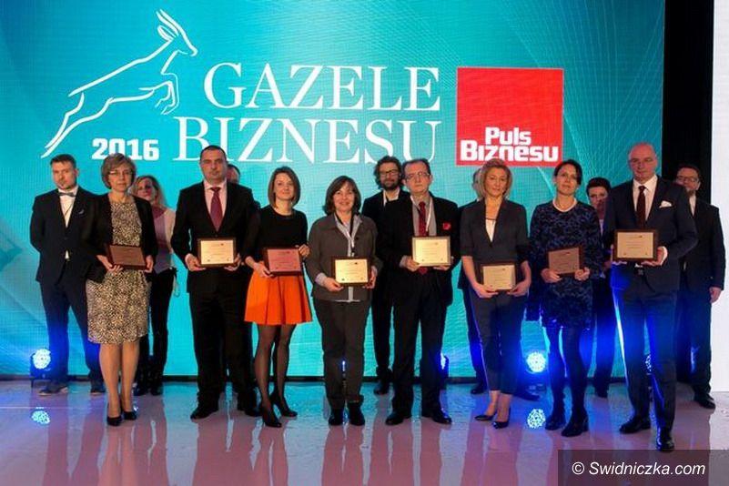 """Żarów: """"Gazela Biznesu"""" dla firmy Daicel z Żarowa"""