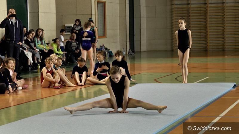 Żarów: Akrobatyczne mistrzostwa