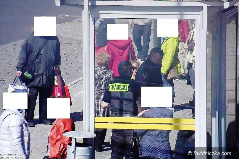 Świdnica: Spożywali alkohol w niedozwolonych miejscach