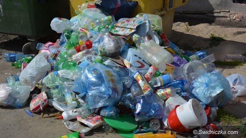 Strzegom: Kary za niesegregowanie śmieci. Są już pierwsze zgłoszenia