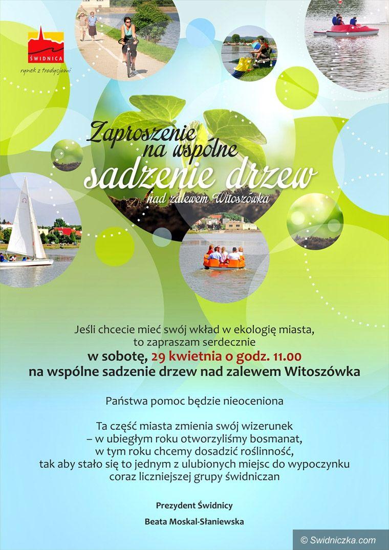 Świdnica: Zaproszenie na wspólne sadzenie drzew nad Zalewem Witoszówka