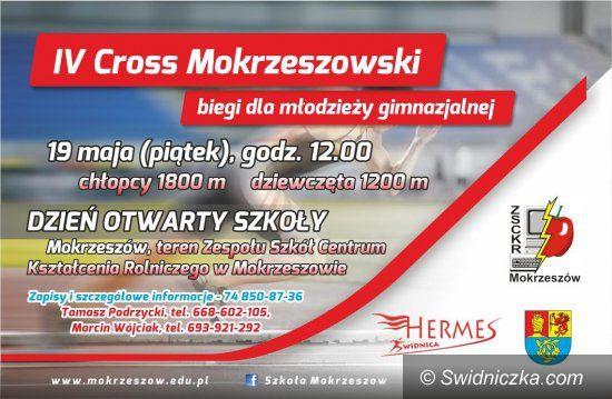 Mokrzeszów: Wystartuje Cross Mokrzeszowski