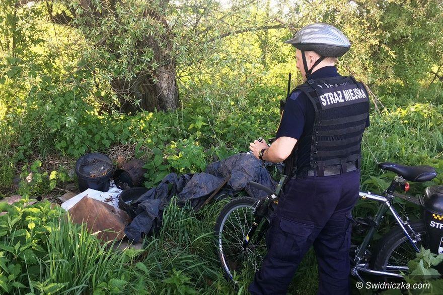 Świdnica: Ekologiczny patrol strażników miejskich