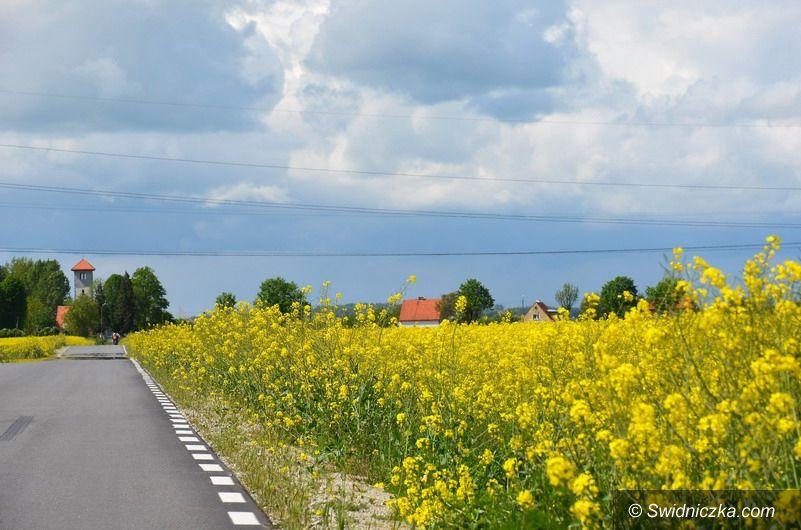 Gmina Strzegom: Miliony na scalanie