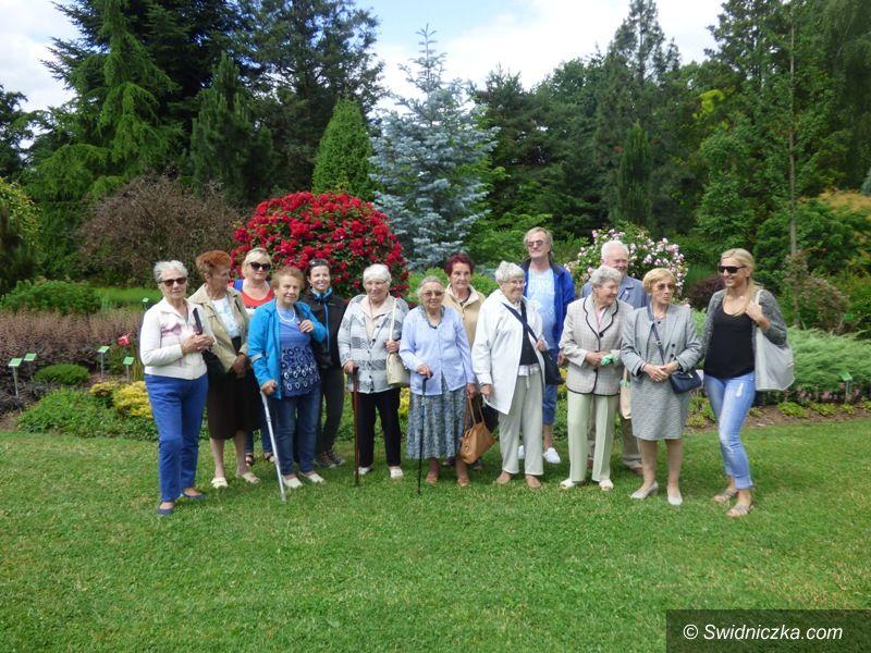 Strzegom: Seniorzy w Arboretum w Wojsławicach