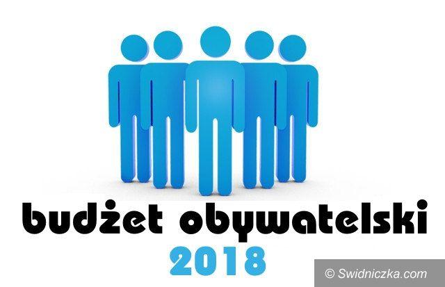 Świebodzice: Rusza świebodzicki budżet obywatelski 2018