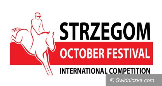 Strzegom: ACTIVO–MED Strzegom October Festival