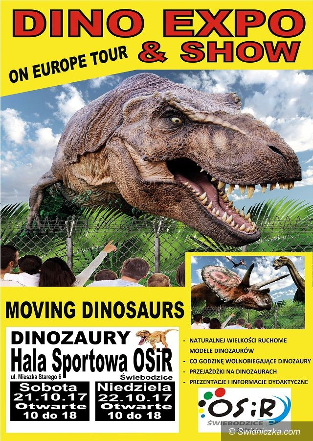 Świebodzice: Dinozaury jak żywe