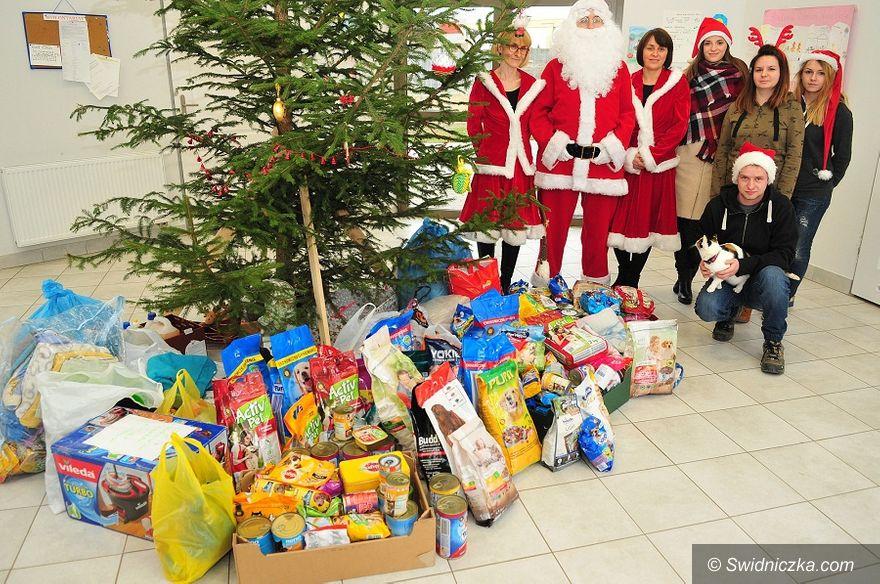 Świdnica: Mikołaj odwiedził świdnickie schronisko dla zwierząt