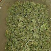 Świebodzice: Twierdzi, że trzymał narkotyki na własny użytek...