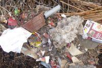 Świdnica: Pozbył się odpadów za 500 zł