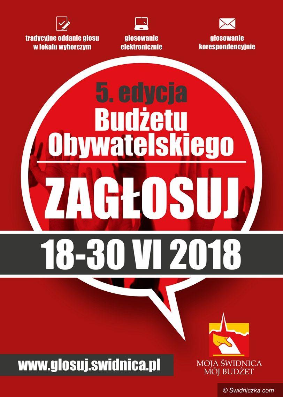 Świdnica: Świdnicki Budżet Obywatelski 2018 – zagłosuj!