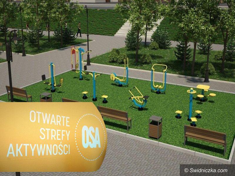 Borów: Otwarta Strefa Aktywności w Borowie