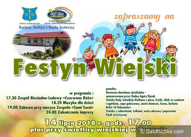 Borów: Sobotni festyn w Borowie