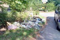 Świdnica: Śmieci przy drodze