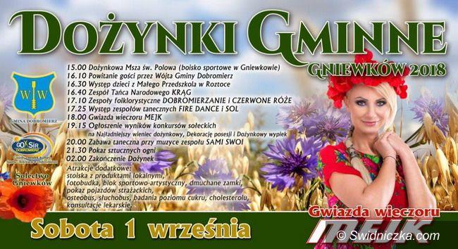 Gmina Dobromierz: Święto plonów coraz bliżej