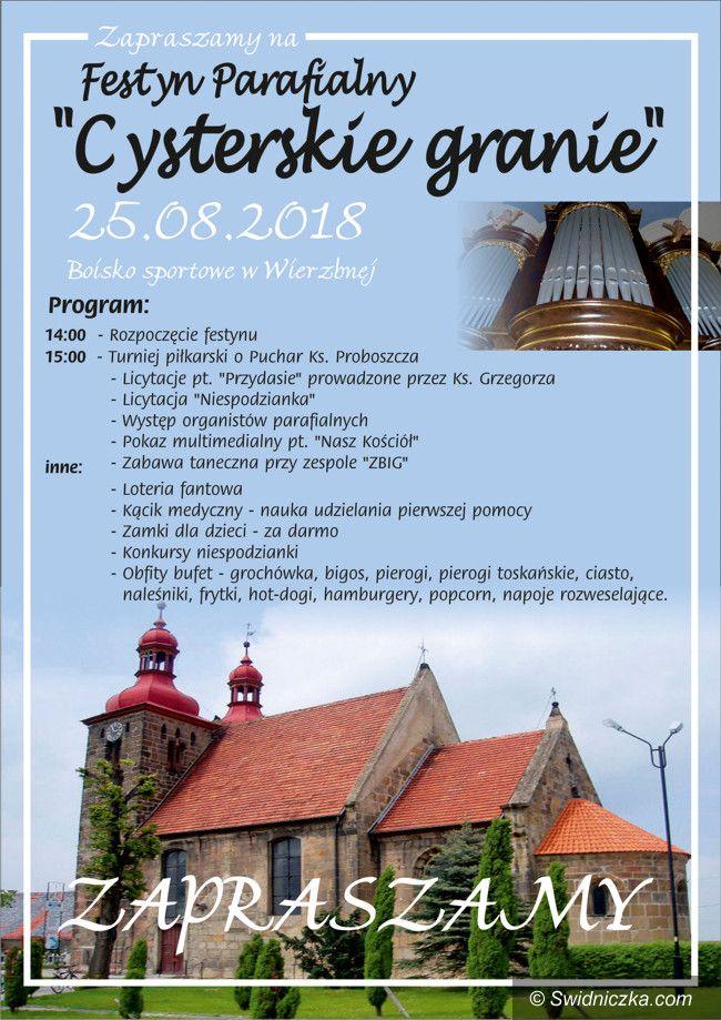 Wierzbna: Festyn Parafialny w Wierzbnej