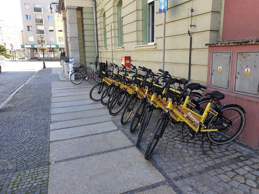 Strzegom: Wypożyczają rowery