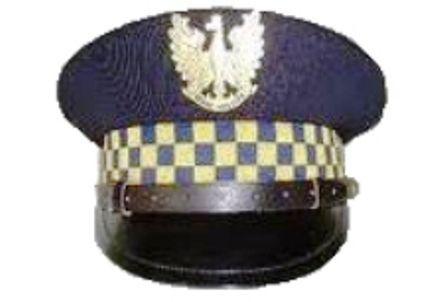 Świdnica: Strażnicy w akcji