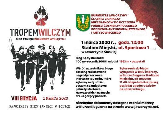 Jaworzyna Śląska: Kolejny bieg