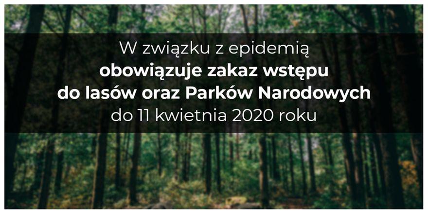 REGION: Zakaz wstępu do lasów