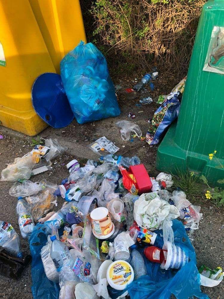 Żarów: Śmietnisko wokół śmietnika