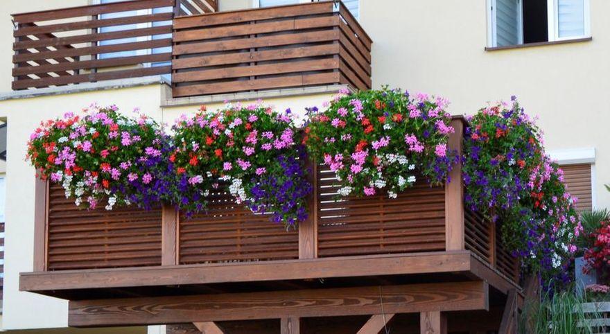 Świebodzice: Najładniejsze balkony