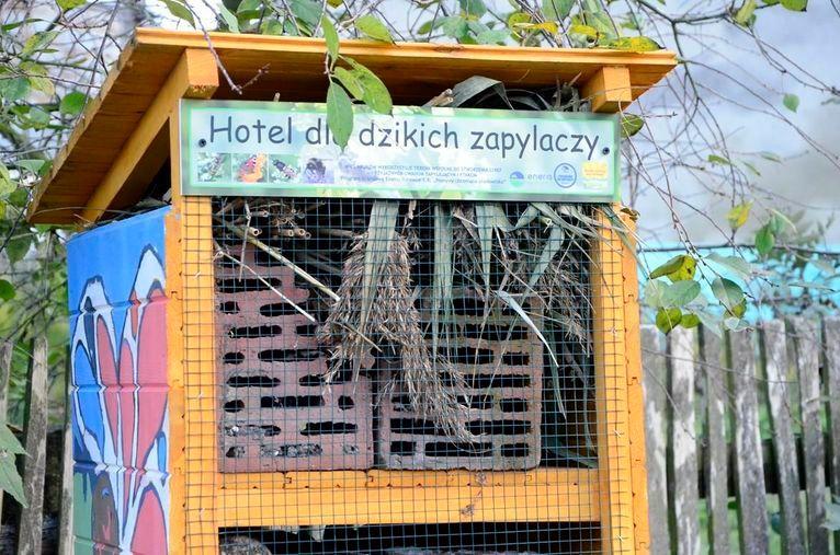Wierzbna: Hotele dla owadów