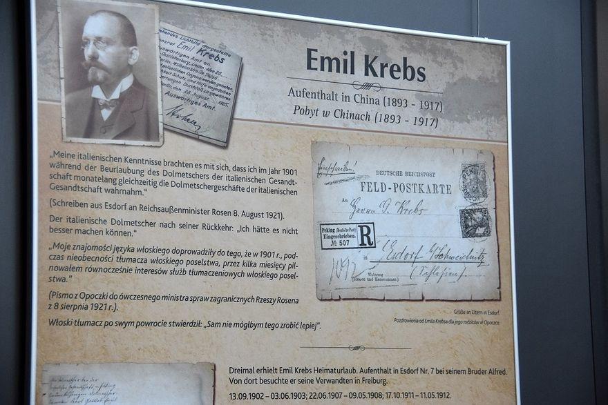 Świebodzice: Urodziny Krebsa