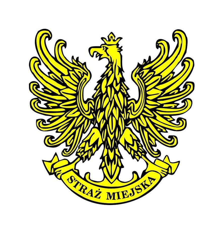 Świdnica: Wzywani na interwencje