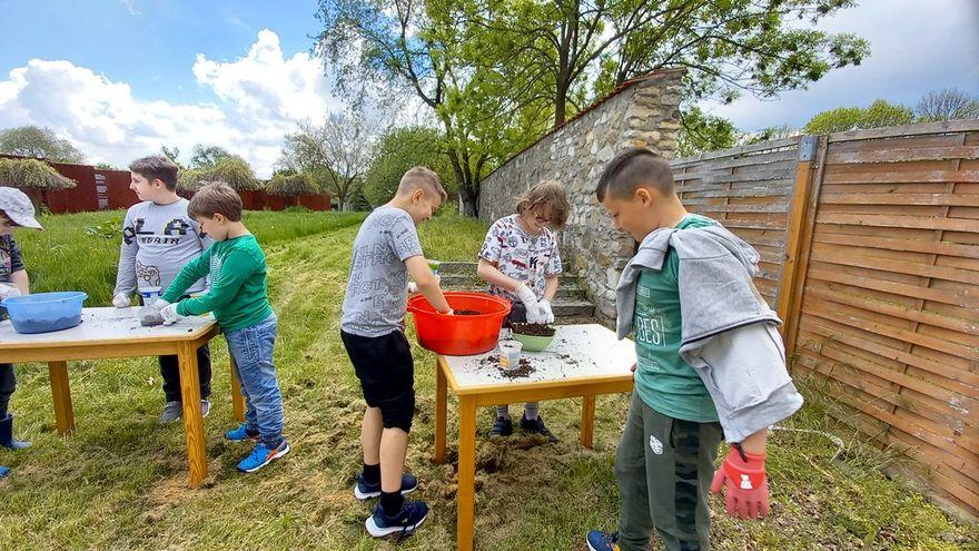 Grodziszcze: Ekologiczny ogród